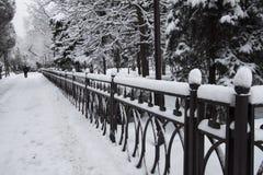 Inverno, neve sul marciapiede del metall Fotografie Stock Libere da Diritti