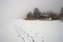 Inverno nevoento fotografia de stock royalty free