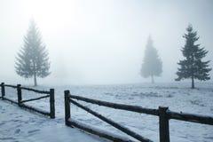 Inverno nevoento Fotografia de Stock