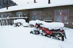 In inverno nevoso Fotografia Stock Libera da Diritti