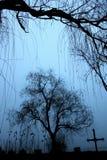 inverno no cemitério Fotos de Stock Royalty Free
