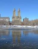 inverno no Central Park. New York. Imagens de Stock