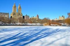 inverno no Central Park. New York. Imagens de Stock Royalty Free