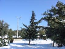 inverno no citu de Baku Imagens de Stock