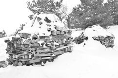 Inverno no jardim Fotos de Stock
