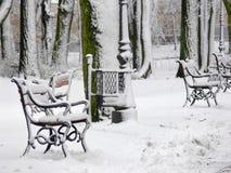 Inverno no parque imagem de stock royalty free