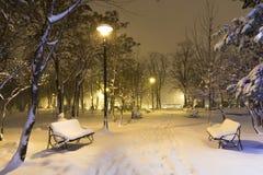 Inverno no parque Imagens de Stock Royalty Free
