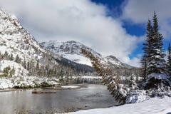 inverno no parque da geleira fotos de stock