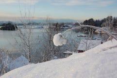 Inverno norvegese Fotografie Stock Libere da Diritti