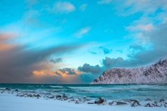 Inverno Norvegia Spuma ed uccello del mare sopra le onde Fotografie Stock