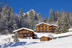 Inverno nos alpes Imagem de Stock