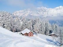 Inverno nos cumes Foto de Stock