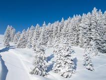 Inverno nos cumes Fotos de Stock