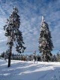 Inverno, nuovo anno fotografia stock
