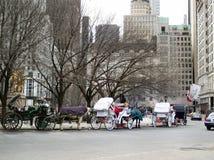 Inverno in NYC 8 fotografia stock libera da diritti