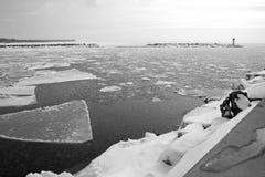 inverno o Lago Erie Fotografia de Stock Royalty Free