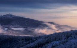 inverno o mais foreest e Fogg fotos de stock