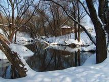 Inverno, ombra, gelo, bianco, pulito, lanuginoso, sdrucciolevole, acqua, fiume, specchio, riflessione, cielo, natura Fotografia Stock Libera da Diritti