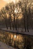 Inverno in oro Fotografia Stock