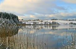 Inverno pelo lago Fotos de Stock Royalty Free