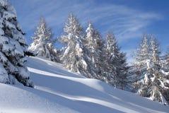 Inverno perfeito na floresta Fotos de Stock Royalty Free