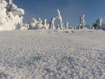 Inverno polonês Imagem de Stock Royalty Free