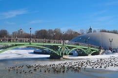 inverno, ponte e patos Imagens de Stock Royalty Free