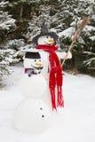 Inverno - pupazzo di neve in un paesaggio nevoso con un cappello Fotografia Stock Libera da Diritti