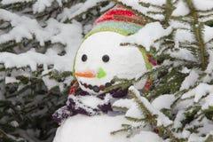 Inverno - pupazzo di neve in un paesaggio nevoso con un cappello Fotografie Stock Libere da Diritti