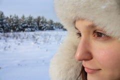 inverno puro Fotos de Stock Royalty Free