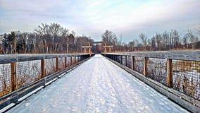 inverno puro de Michigan Fotos de Stock Royalty Free