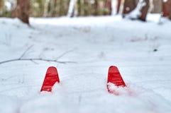 inverno que caminha em esquis Fotografia de Stock