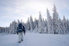 Inverno que trekking Foto de Stock Royalty Free