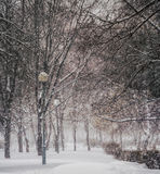 Inverno Queda de neve na cidade Fotografia de Stock