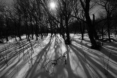 Inverno a Roan Immagini Stock