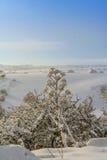 INVERNO RURALE DEL PAESAGGIO Alta Murgia National Park: colline nevose - Puglia ITALIA Immagini Stock