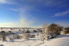 INVERNO RURALE DEL PAESAGGIO Alta Murgia National Park: colline nevose - Puglia ITALIA Fotografie Stock Libere da Diritti