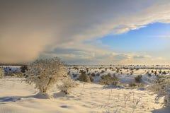 INVERNO RURALE DEL PAESAGGIO Alta Murgia National Park: colline nevose - Puglia ITALIA Fotografia Stock