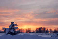 Inverno in Russia Immagini Stock Libere da Diritti
