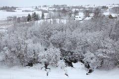 Inverno russo Paesaggio innevato Immagini Stock Libere da Diritti