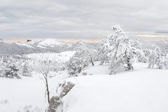 Inverno Scenics Fotografia Stock Libera da Diritti