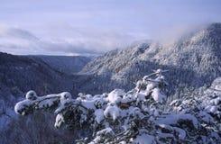 Inverno in Sedona Fotografie Stock Libere da Diritti