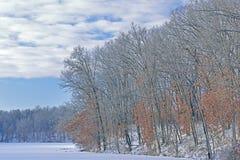 Inverno Shoreline Eagle Lake immagine stock