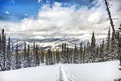 inverno Shoria Imagem de Stock