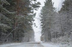 Inverno in Siberia Fotografia Stock