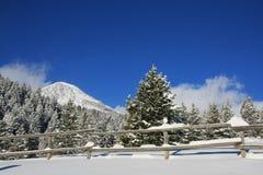 Inverno Skys foto de stock