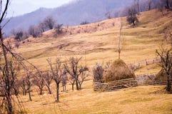 Inverno Snowless del pendio di collina Fotografia Stock Libera da Diritti