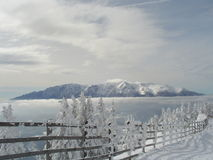 Inverno sobre tudo Fotos de Stock