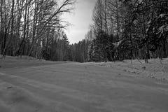 Inverno, strada nel legno Foto in bianco e nero di Pechino, Cina immagine stock libera da diritti