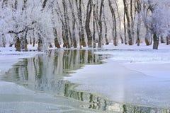 Inverno sul Danubio Fotografia Stock Libera da Diritti
